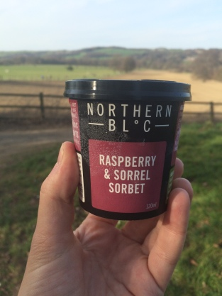 Northern Bloc ice cream at Yorkshire Sculpture Park