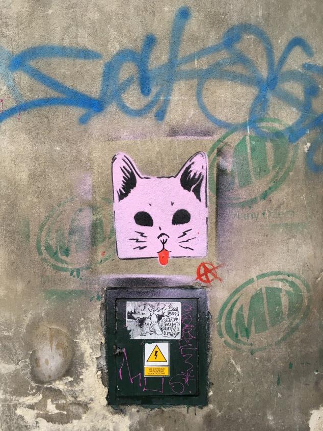 Cat stencil, Krakow street art