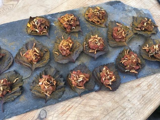 Appetisers at Hidden Harewood - venison tartar