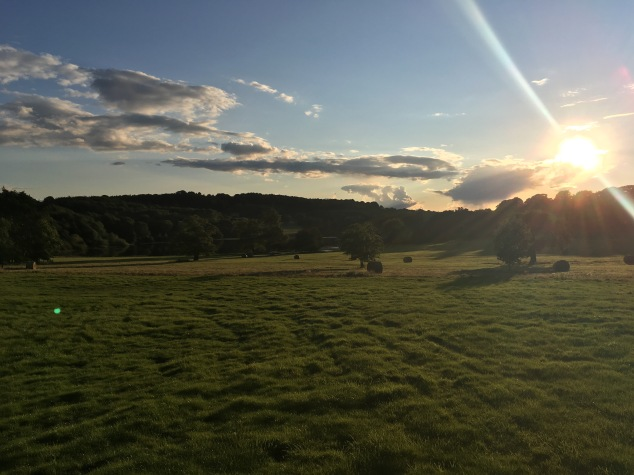 Sunset at Harewood Estate, Hidden Harewood